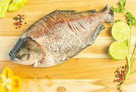 Tenda do Peixe